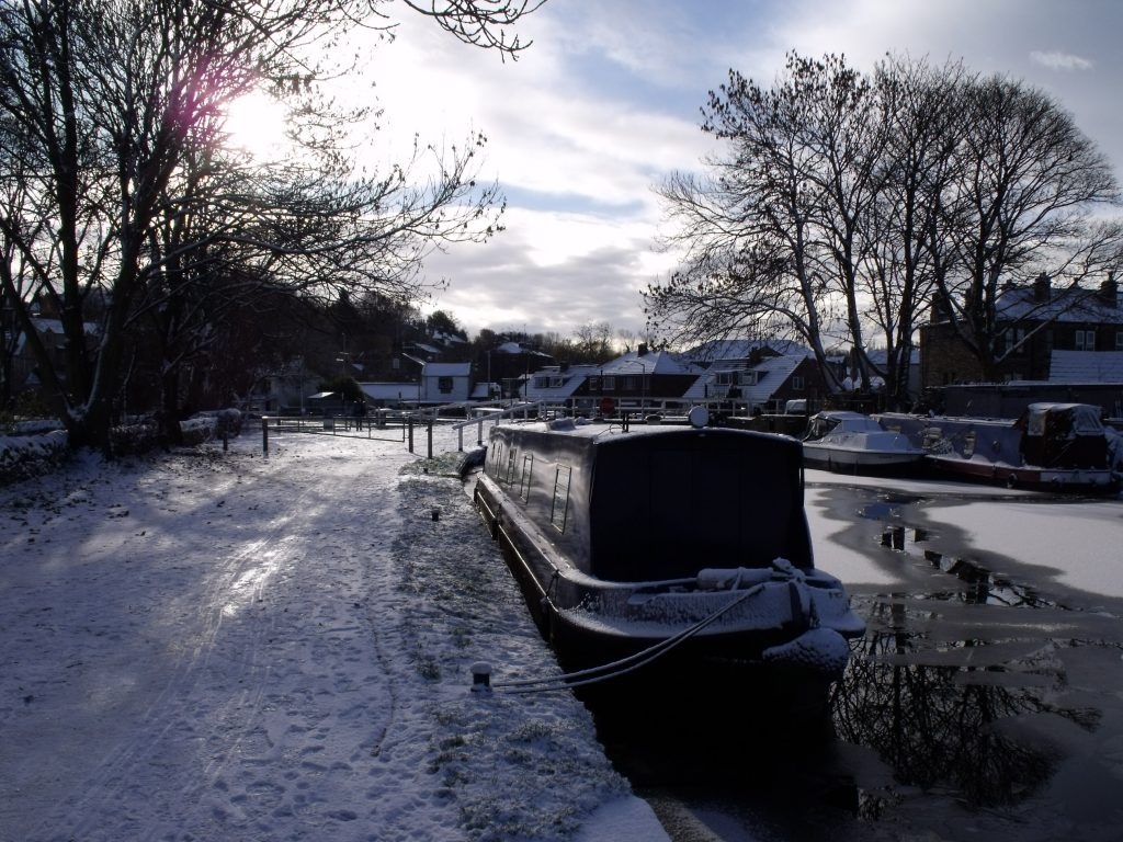 Audrey Too in the ice at Rodley